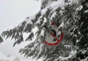 25. Januar 2015 - Versteckspiel oder Schnee, der den Verkehr durcheinander bringt