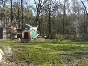 Garten + angrenzender Wald