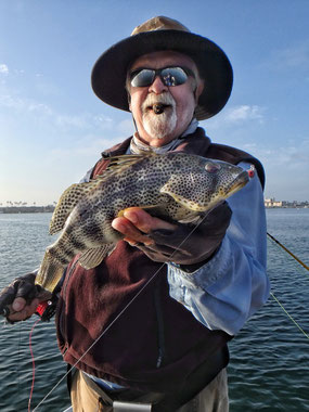"A nice Spotted Bay Bass (aka ""Spottie"")"