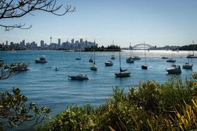 Sydney, Sydney Harbour, Skyline, Sydney Skyline, Hermitage Foreshore Walk, Harbour Bridge, Sydney Harbour