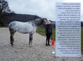 Das Pferd als verlässliche Entscheidungshilfe - horse-feedback.ch - Pferdeunterstütztes Coaching