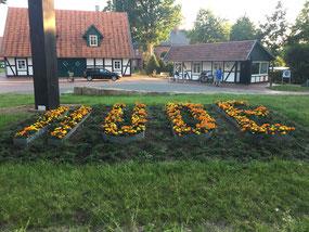 """Aus Metall geformte Buchstaben bilden den Namen """"Hüde"""" in deren Innern gelbe und orangefarbene Blumen wachsen."""