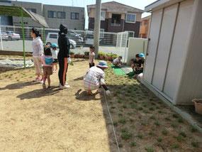 園庭芝生化風景