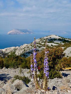 Reiseberichte Kroatien Küste, Lukovo