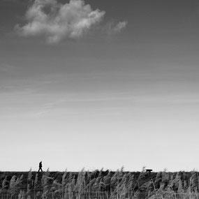 © Marc Forel