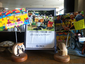 CFP Donation box and business cards at OISCA Headquarters