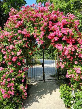 Eingang in den Blütengarten