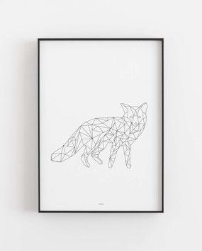 Fuchs geometrisch