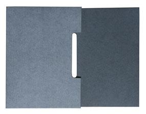 Anne Goy, reliure d'art, reliure de création, bookbinding, bookdesign , travail du cuir, leather work, étui pour livre , boite, box,