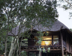 Hluhluwe Lodge Zululand Treelodge