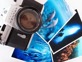 ドルフィンスイムやスキンダイビングの写真と古いカメラ