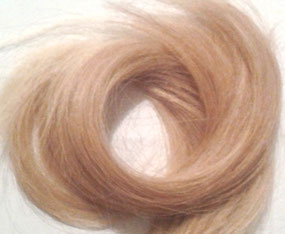 Haarmineralstoffanalyse, Haarmineral-Analyse, Schwermetalle, Hormon Störungen, hormonelle Störungen