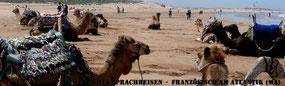 ET.Voilà Sprachferien - auch für Begleiter der Sprachkurs-Teilnehmer. In Marokko bist Du nie allein.