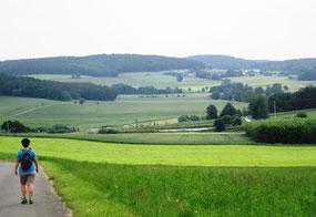 Blick nach Osten (Kohlbühl)