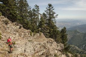 Bild: Wandern am Canigou Canigou in den Pyrénées-Orientales