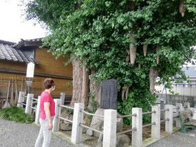 富士 子育て地蔵尊