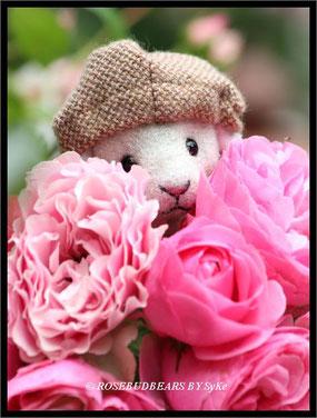 Rose Leonardo-da-Vinci Meilland-Rose