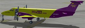 Beechcraft B1900C EC-MCN
