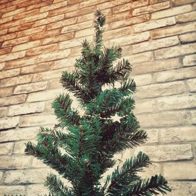 千葉理容室Revaクリスマスツリー写真
