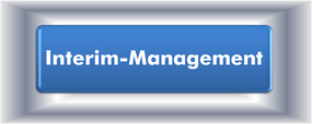 Neuromanagement,ergänzende,Informationen,interim,management,interimmanagement,