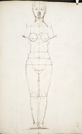 (8) Albrecht Dürer, Sketch of a Female Body, MS 5228 fol. 142r (verso with recto visible), British Library / London
