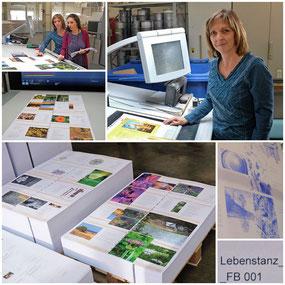 Lebenstanz - Druckstart am 2. November 2017 bei der Druckerei Bösmüller
