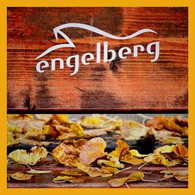 ENGELBERG/OW, 14. OKTOBER 2015 - 14. ACADEMIA ENGELBERG