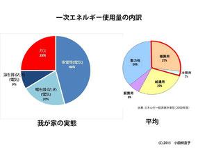図5 小田桐家の1年間のエネルギー使用実態