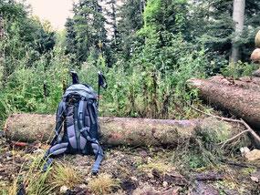 Wanderrucksack mit Stöcken auf einem Wanderweg.