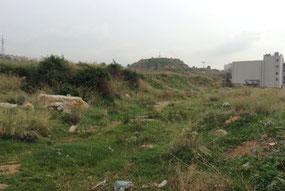 Ce qui subsiste du camp de Tel al-Zaatar – Photo : Marion Kawas