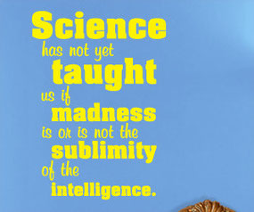 Science has not yet taught us if madness is or is not the sublimity of the intelligence Wall Sticker Quote