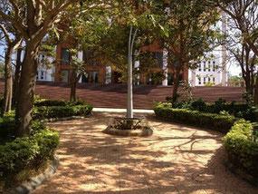 インドの大学キャンパスの写真
