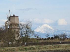 新旭風車村から見た雪の伊吹山