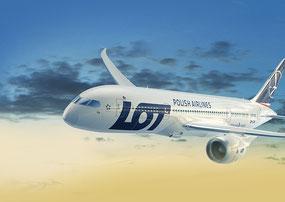 Vola a bordo del Boeing 787 lot