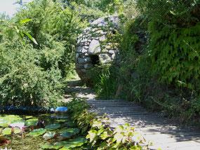 jardin de sambuc dans les Cévennes
