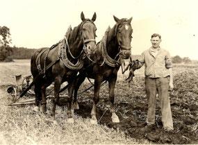 Bauer Walter Horn mit seinem Wendepflug, um 1952.  Quelle: M. Horn