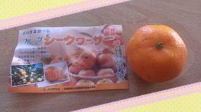 予想外の橙っぷり