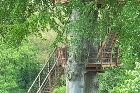 cabane dans les arbres pour  2 en baie de somme