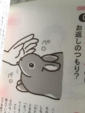 うさ語レッスン帖という本の1ページ
