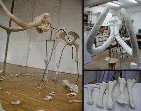 Herstellung des Mammutskelettes, Fotograf: Achim Lippoth
