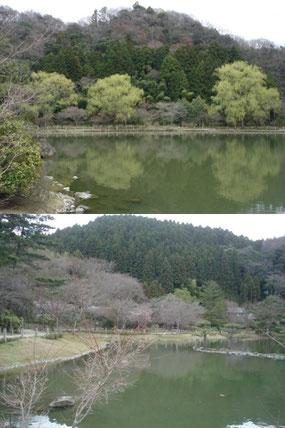 浄土庭園 (2010年4月11日)