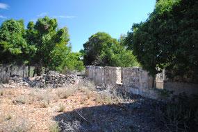 Tintamarre, nur noch Ruinen und Gestrüpp