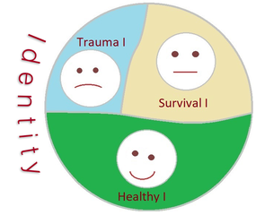 Trauma of Identity, Trauma biography, Intention method, online IoPT Practitioner, Dorothea Richey, Skype Sessions