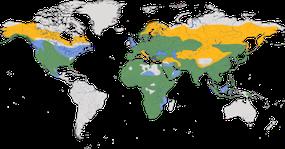 Karte zur Verbreitung der Würger.