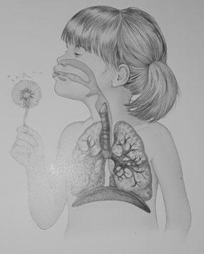 """Abbildung aus """"Der Menschliche Körper"""""""