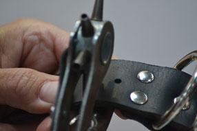 Lederhalsband herstellen Ledermanufaktur Bolleband