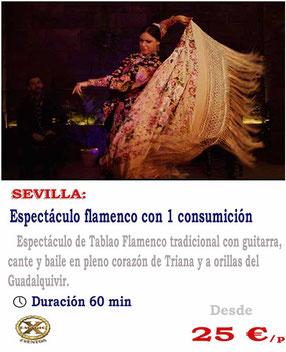 entradas para espectáculo flamenco en Sevilla