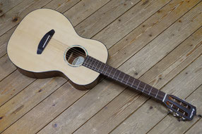 Breedlove Pursuit Parlor
