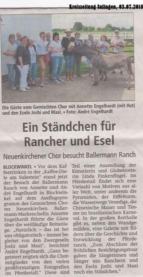 Kreiszeitung Sulingen/Bassum - 03.07.2018