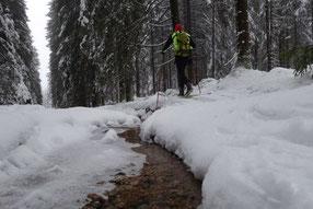 Skifahren von Weitersglashütte auf dem Kamm